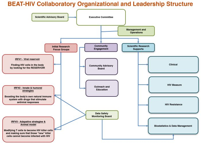BEAT-HIV Collaboratory Organizational and Leadership Structure